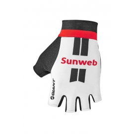 Gants Giant Team SUNWEB 2017