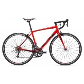 Vélo de route Giant Sport Contend 3 2019