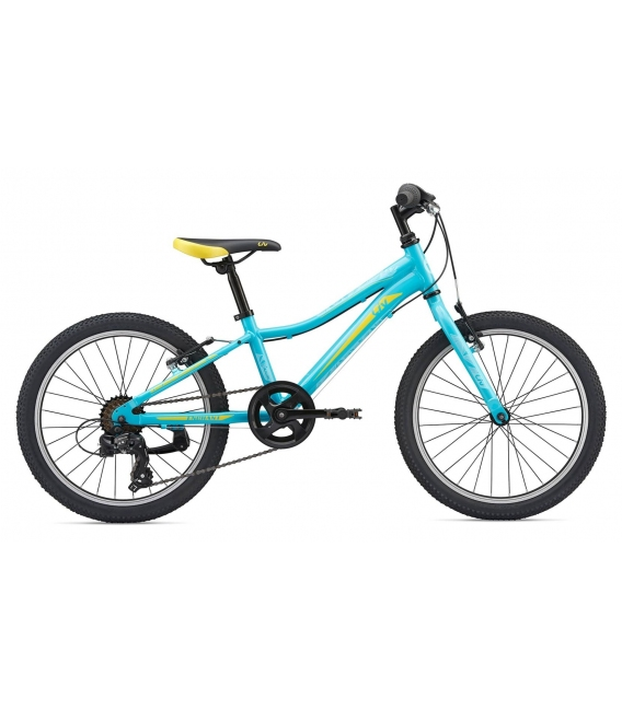 VTT Junior Giant LIV Enchant 20 Lite 2019