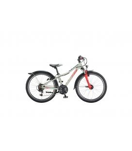 VTT Enfant KTM WILD CROSS 24.18 gris 2020
