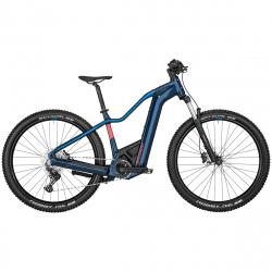 VTTAE Bergamont E-Revox Premium Sport FMN 2022